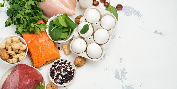 Importancia de la proteína